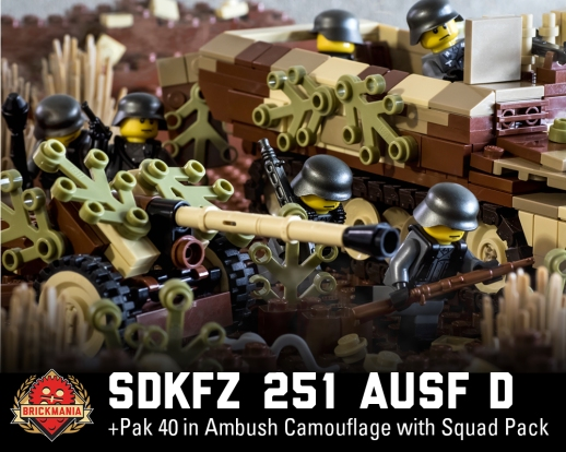 SdKfz 251D and Pak 40
